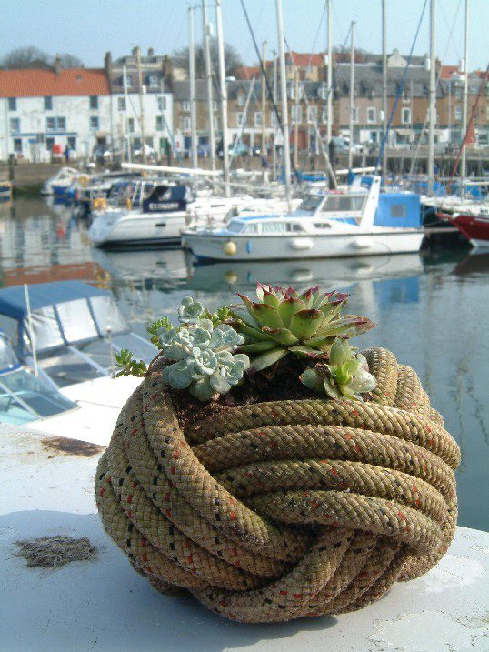 These Rope Planters Are So Smart and They Have Me Dreaming of Spring