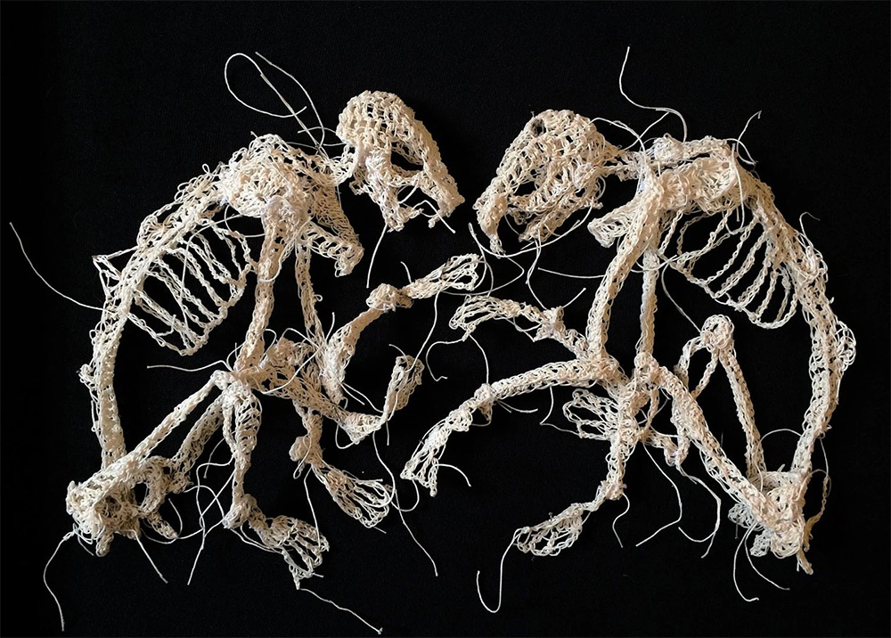 Caitlin McCormack Crochets Decaying Animal Skeletons