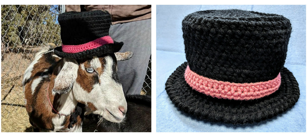 You Can Crochet Stinky Earl the Goat's Top Hat Too!