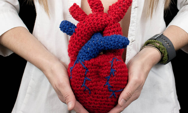 Once You See It, You'll Want To Crochet This Anatomical Heart Surgery Trophy Designed By Shawn Torres