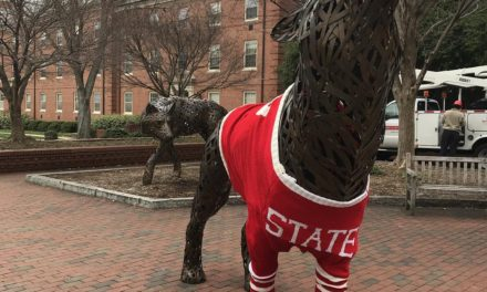 What Time Is It Mr. Wuf? Time For a Yarn Bomb, Spotted At North Carolina State University!
