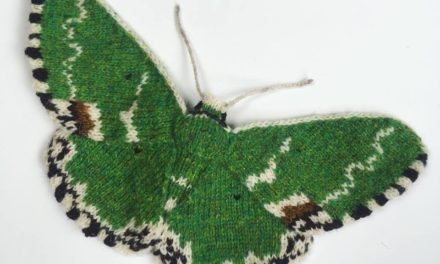 Blotched Emerald Moth (Comibaena Bajularia) Hand Knit By Max Alexander in Shetland Wool