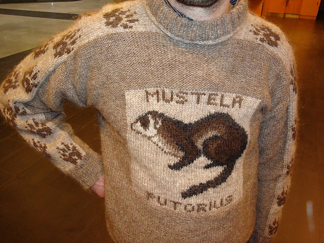 Knit a Ferret Lover Sweater