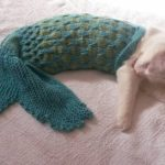 Unleash Your Cat's Inner Mermaid With This Amusing Knit Mermaid Blanket / Photo Prop