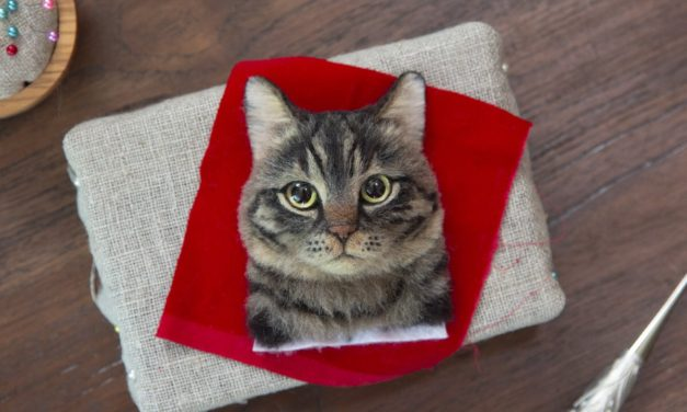 You've Never Seen 3D Needle-Felted Cat Portraits This Good – Wow!