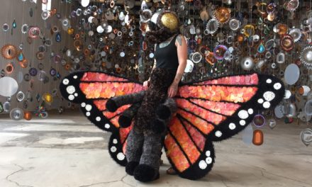 Art For Change Butterfly By Huckleberry Elling As Part of Nick Cave's 'Until' at Mass MoCA