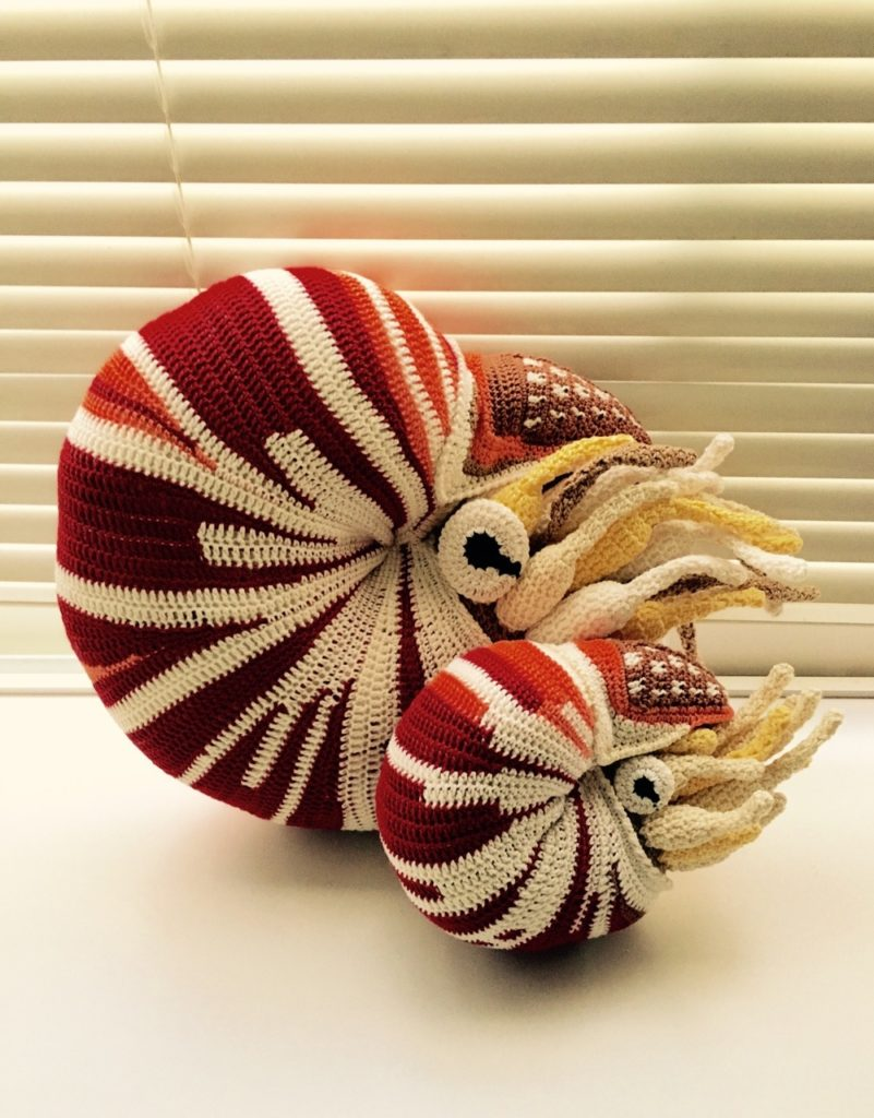 I Spy a Couple of Crochet Butterflyfish ... Oh, and a Nautilus Too ...