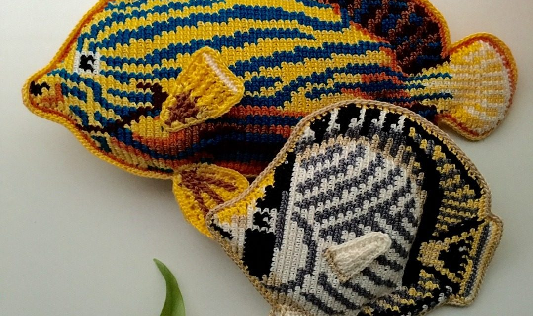 I Spy a Couple of Crochet Butterflyfish … Oh, and a Nautilus Too …
