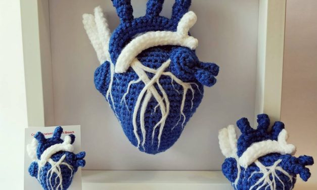 Gorgeous Saltire Anatomical Hearts Crocheted By Laura Cameron of Lost in the Wood