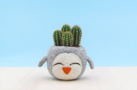 Felted Succulent Planters By The Yarn Kitchen – So Sweet!