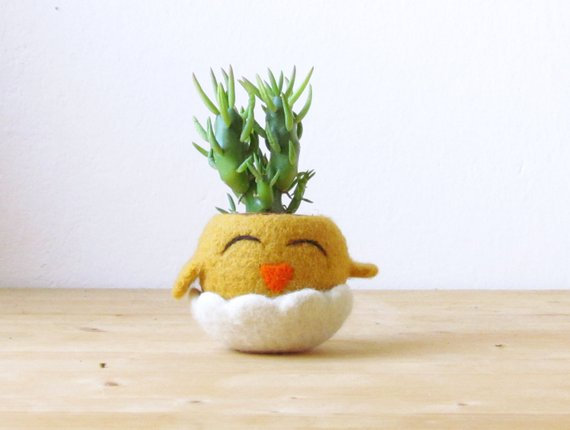 Felted Succulent Planters By The Yarn Kitchen - So Sweet!