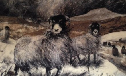 Andrea Hunter 'Paints' With Wool and the Results Are Nothing Short of Captivating …