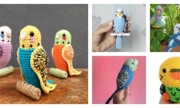Looking For Budgie Patterns? Try Knitting & Crocheting These Pretty Parakeets!