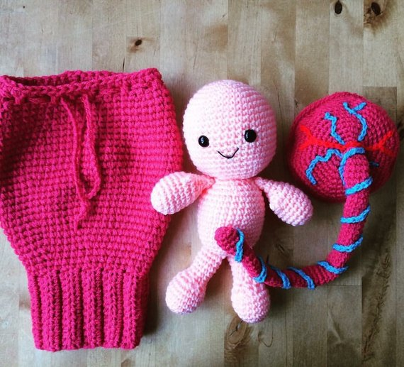 She Crocheted Childbirth Birth Teaching Aids - Set Includes a Uterus, Placenta, Baby and Umbilical Cord