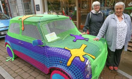 I Spy a Yarn Bombed Mini! It's Art!