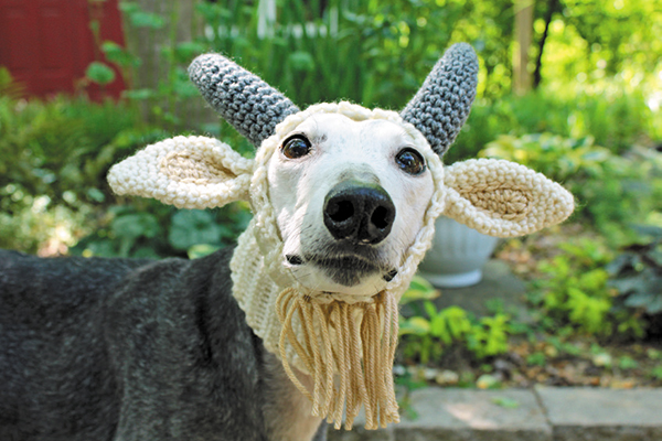 The Gallant Greyhound Offers 'Accessories & Crochet Patterns For Hounds & Humans'