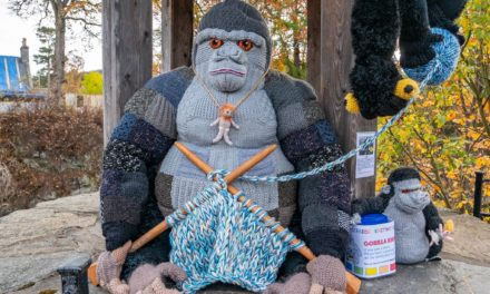 Guerrilla Knitting of a Gorilla Knitting at Braemar Creative Arts Festival