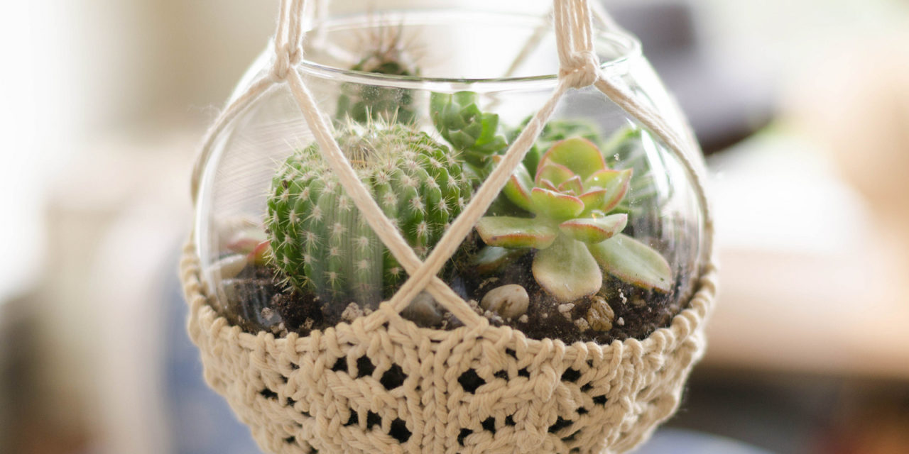 Great Gift Idea: Knit a Terrarium Hanger, FREE Pattern Designed by Pam Powers