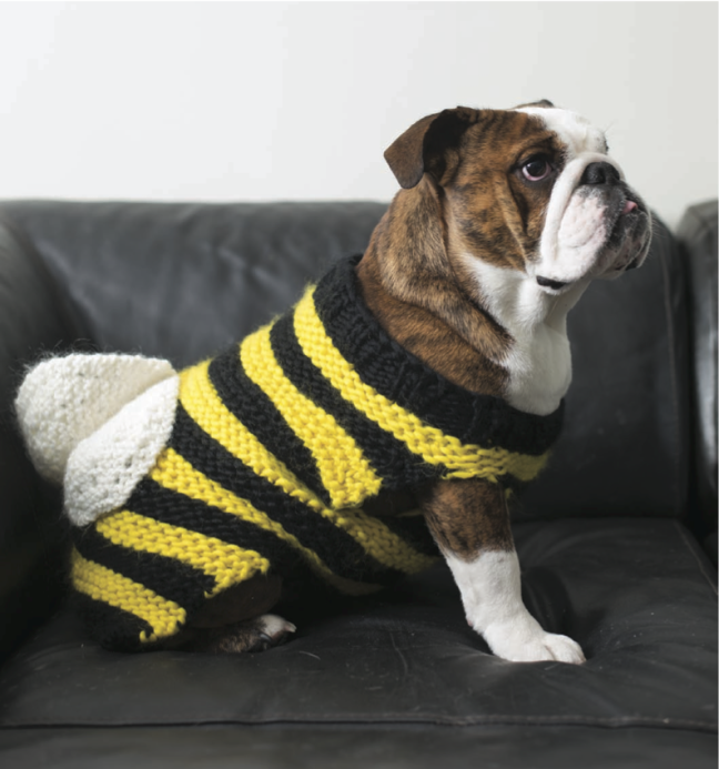 Knit a Bulldog Bumbledog Costume for a Furry Friend, 'Cause Doggy Cosplay is for Anytime of Year!