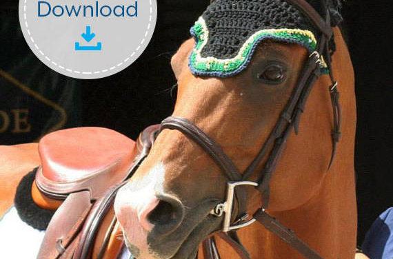Crochet a Custom Fly Bonnet For Your Horse