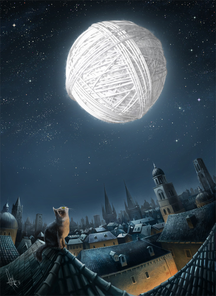 Zmiro the Cat Dreams of a Brighter World For His Yarn-Loving Feline Friends ....