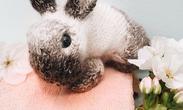 Knit a Netherland Dwarf Rabbit With This New Pattern From Claire Garland