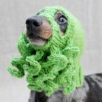 Knit a Cthulhu Dog Hat … Doggy Cosplay at it's BEST!