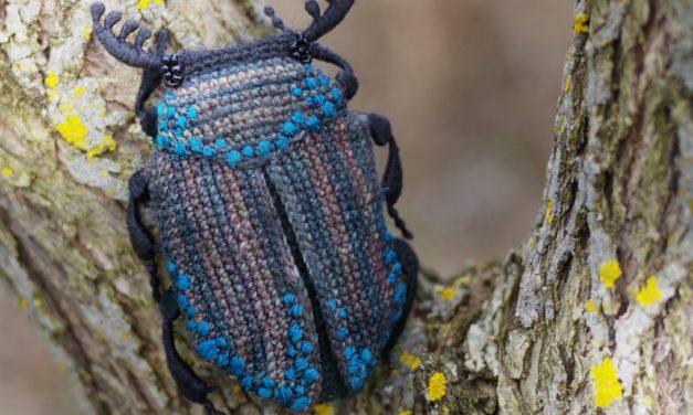 Crochet a Beautiful Beetle Amigurumi … This is What Craftastic Looks Like!