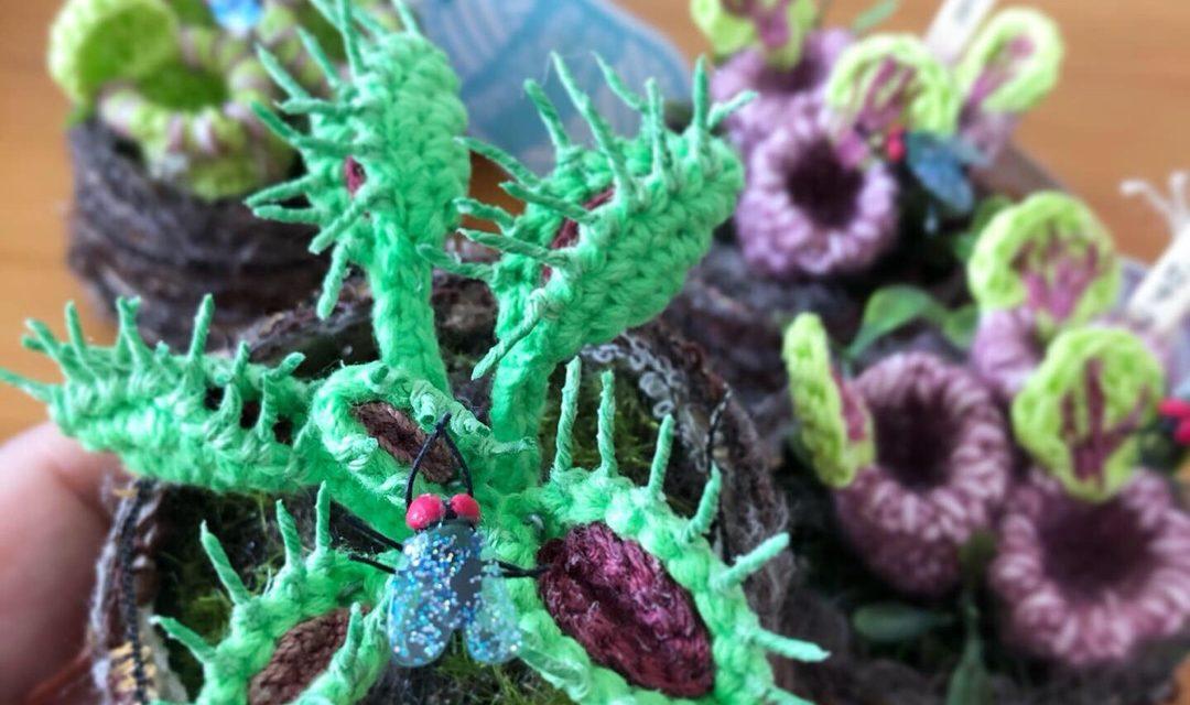 Crochet Venus Flytrap Amigurumi