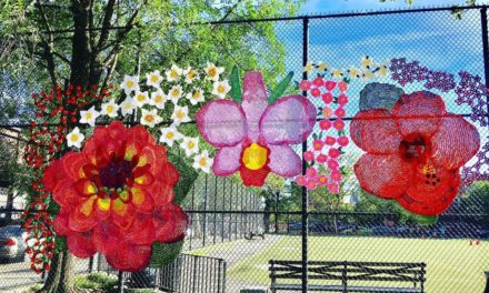 New Yarn Bomb in East Harlem: 'La Flor De Mi Madre 2019' By Naomi Rag