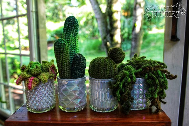 Popular! Crochet a Succulent Cactus Eyeball Plant Amigurumi Designed By Crafty Intentions
