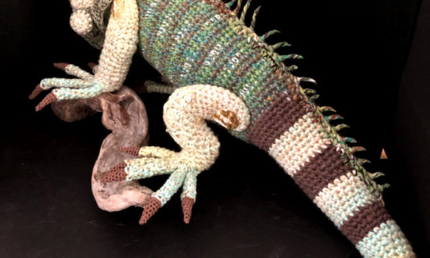 Amazing Lifelike Iguana … It's Crocheted!
