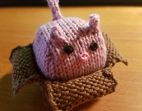 I Knit a Miniature Cat In a Box and You Can Too!