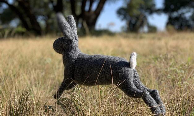 Knit a McGregor's Rabbit … Look, It's In Mid-Stride! Designed By Sara Elizabeth Kellner