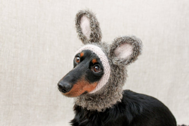 Designer Spotlight: The Most Creative Knitted Dog Hats & Cosplay Patterns Designed By Lucky Fox Knits