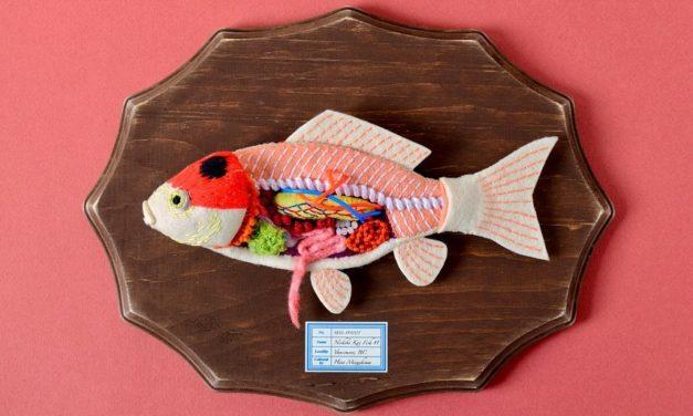 Anatomy of Nishiki-Koi Fish Felted By Hiné Mizushima
