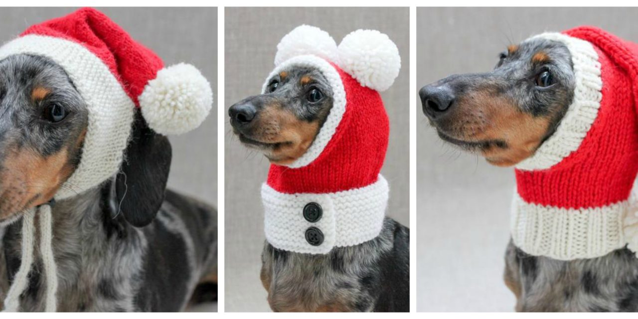 Three Funny Little Christmas Hats To Knit For Our Doggy Friends …