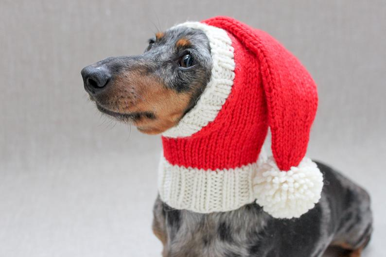 Three Funny Little Christmas Hats To Knit For Our Doggy Friends ...