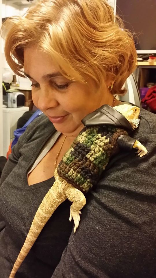 Dexter The Bearded Dragon Looks Dapper In His Crochet Hoodie ... Handmade With LOVE!