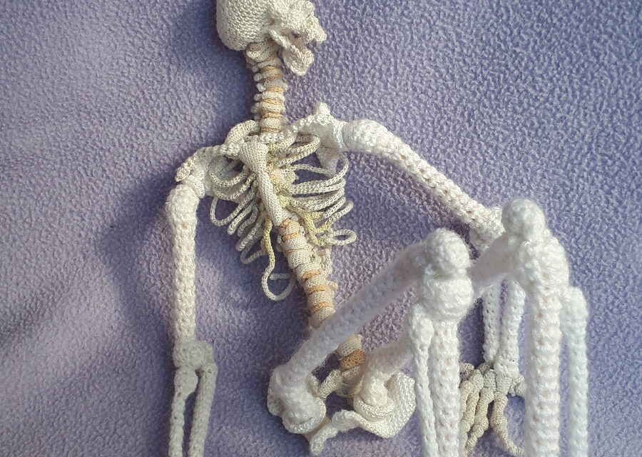Crochet an Anatomically Correct Skeleton – FREE Pattern Includes All 206 Bones, 1/5th Size Scale Model!