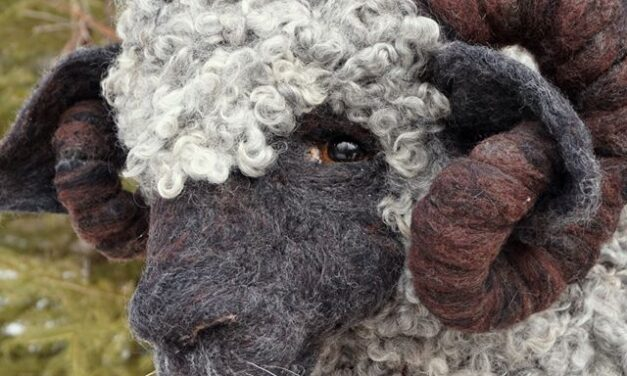 Meet William DeGrey, A Fabulous Felted Sheep By Bella McBride … A Real Charmer!