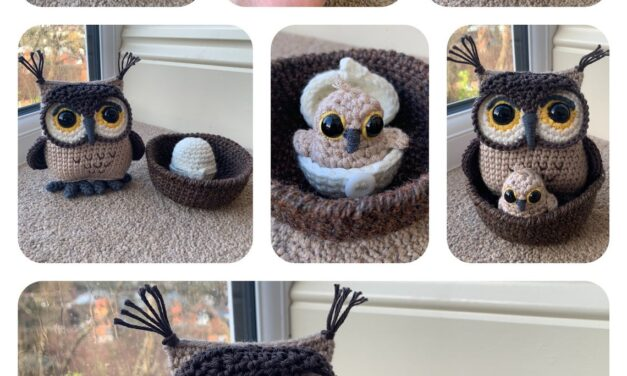 Crochet an Owl Amigurumi, Complete With Teeny Tiny Hatching Owlet