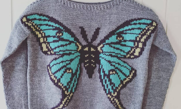 Knit a Spanish Moon Moth Sweater Designed By Alexandria Wenninger