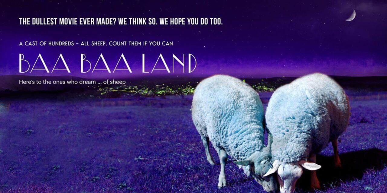 Slow Cinema Births Baa Baa Land, An Eight-Hour Meditative Film Featuring Sheep, Lots Of Sheep!