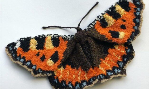 Max Alexander Knit A Small Tortoiseshell Butterfly!