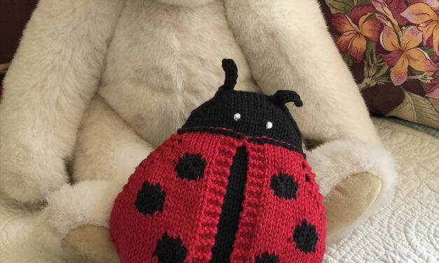 Knit an Adorable Lovebug … It Has Wings That Open!