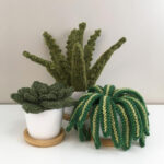 It's Always The Right Time To Knit a Mini Houseplant Trio … So Fun, Makes A Great Gift!