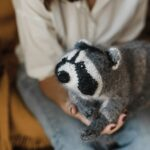 Eco Toys for Children: The Benefits of Knitted Toys