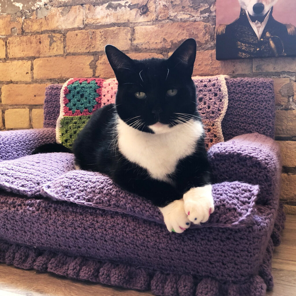 Red Heart's Hot Take On The Popular Kitty-Cat Couch ... 'Pamper Your Puss!'