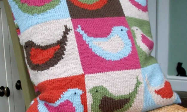 Hey Fellow Bird Nerds, This Knit Decorative Pillow Pattern Is For YOU!